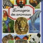 imagerie des animaux